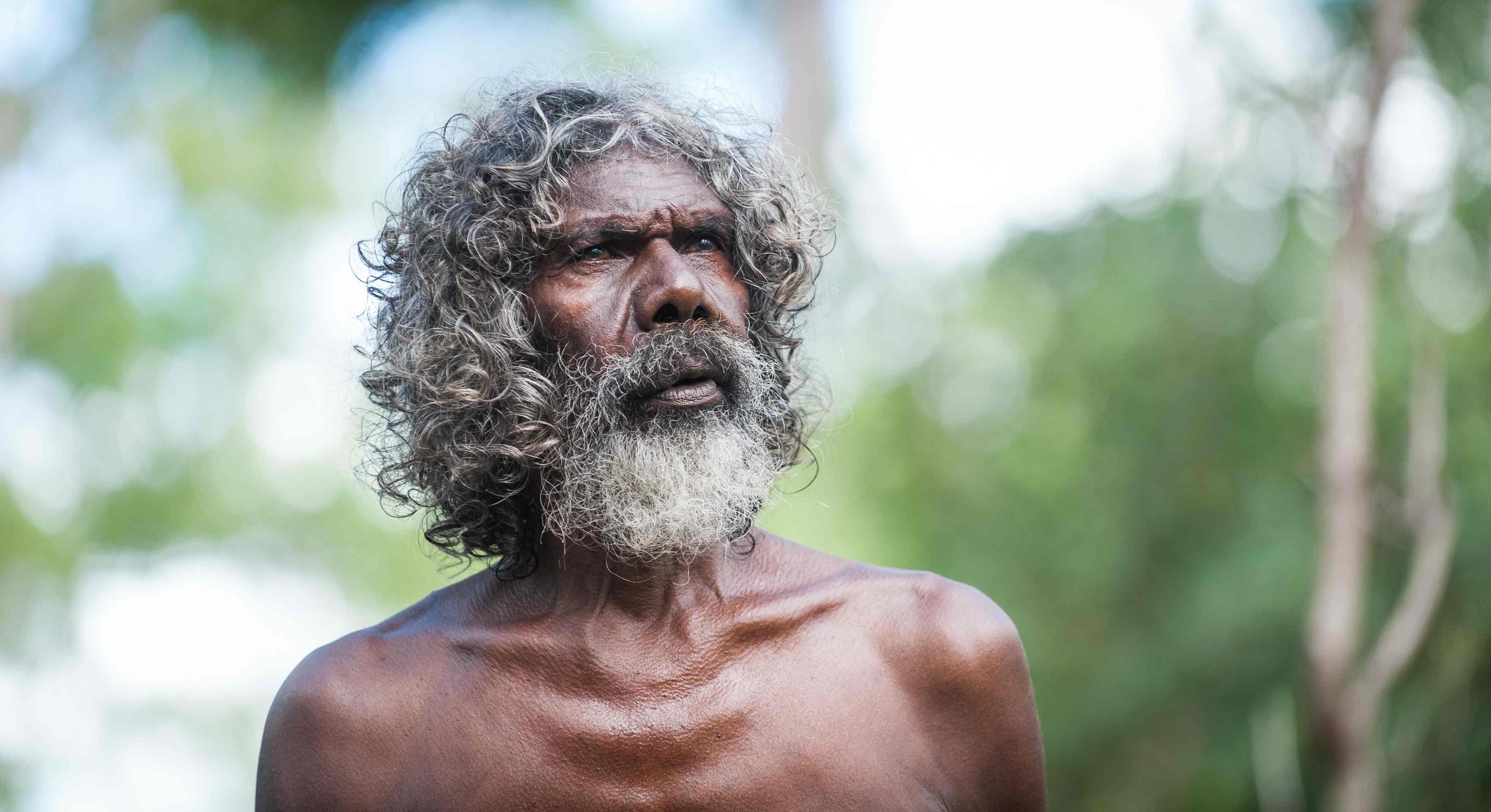 kinship organizations australian aborigines
