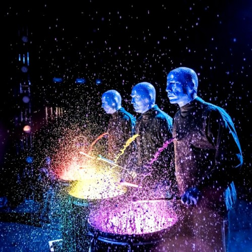 Blue Man Group comes to Auckland