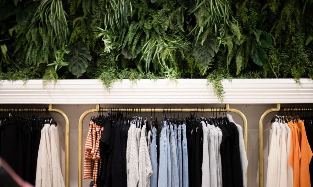 Foliage above garments on racks